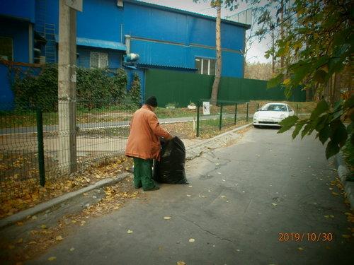 Уборка листьев. Октябрь 2019 г.